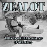 Zealot - Organicsound - This Is Organic Sound 2 - Mix