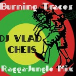 Burning Traces Ragga-Jungle Mix by Dj.Vlad Cheis