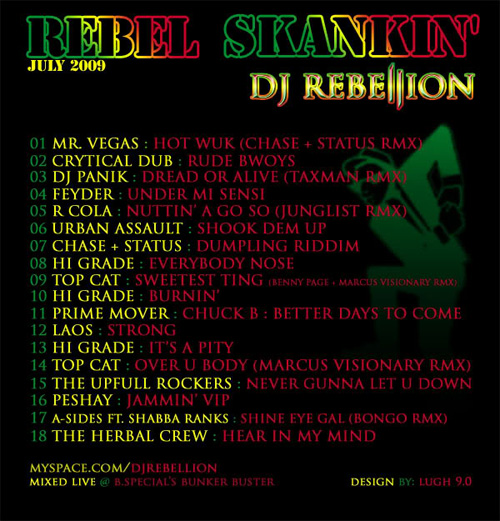 RebelSkankin_July2009