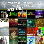 Vote: Top 2012 Mixes on Raggajungle.biz