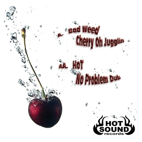 badweed-hot-sound-records