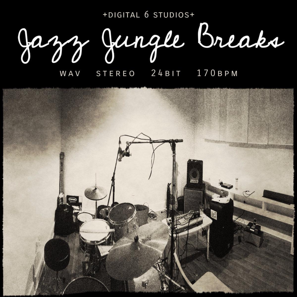 Raggajungle biz | The number one website for Raggajungle music